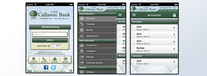 screen shots web