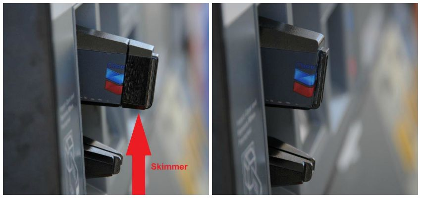 skimmers-compared-image